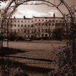 Kemp Town Enclosures - Photographs by Lesley Aggar