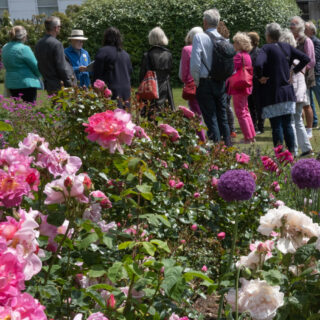 NGS Open Day Success