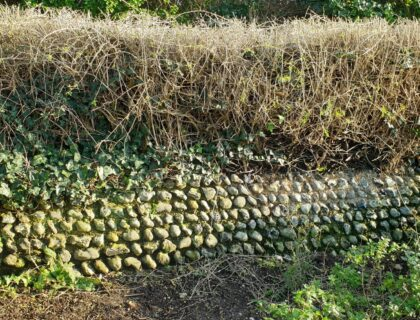 "Restoration and rebuilding ""The Secret Garden"" Flint Wall"